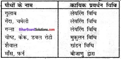 Bihar Board Class 7 Science Solutions Chapter 17 पौधों में जनन 2