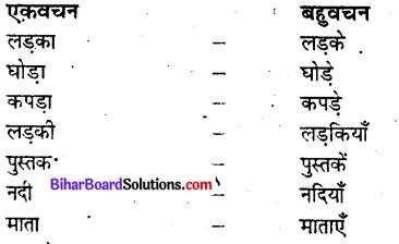Bihar Board Class 9 Hindi व्याकरण वचन - 1