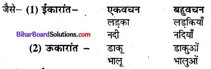 Bihar Board Class 9 Hindi व्याकरण वचन - 2