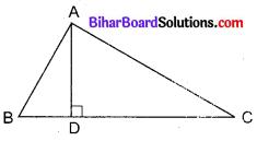 Bihar Board Class 10 Maths Solutions Chapter 6 त्रिभुज Additional Questions MCQ 3