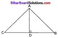 Bihar Board Class 10 Maths Solutions Chapter 6 त्रिभुज Additional Questions SAQ 1