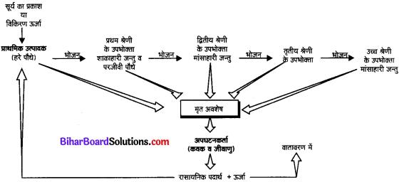 Bihar Board Class 10 Science Solutions Chapter 15 हमारा पर्यावरण