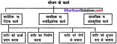 Bihar Board Class 11 Home Science Solutions Chapter 11 भोजन के कार्य