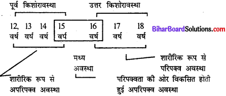 Bihar Board Class 11th Home Science Solutions Chapter 2 किशोरावस्था को समझना