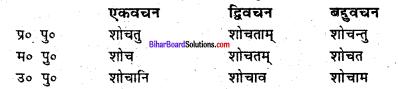 Bihar Board Class 6 Sanskrit व्याकरण धातु-रूपाणि 12
