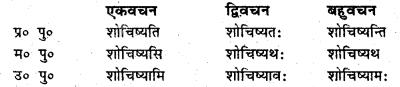 Bihar Board Class 6 Sanskrit व्याकरण धातु-रूपाणि 13
