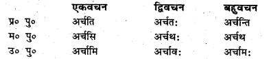 Bihar Board Class 6 Sanskrit व्याकरण धातु-रूपाणि 16