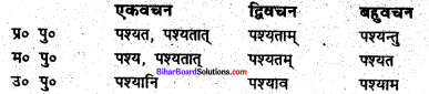 Bihar Board Class 6 Sanskrit व्याकरण धातु-रूपाणि 2