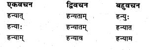 Bihar Board Class 6 Sanskrit व्याकरण धातु-रूपाणि 24