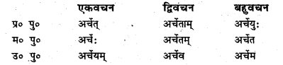 Bihar Board Class 6 Sanskrit व्याकरण धातु-रूपाणि 25