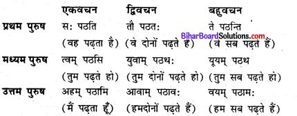 Bihar Board Class 6 Sanskrit Solutions Chapter 4 क्रियापदपरिचय 4