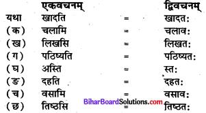 Bihar Board Class 7 Sanskrit Solutions Chapter 5 प्रहेलिका 3