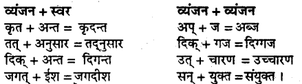Bihar Board Class 9 Hindi व्याकरण सन्धि - 1