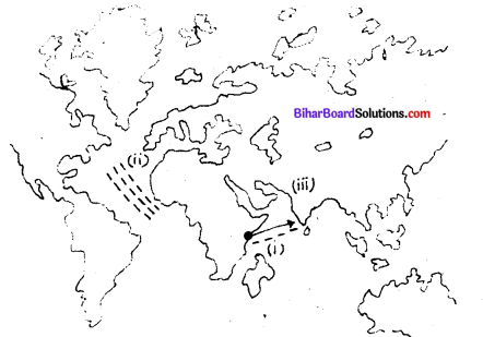 Bihar Board Class 9 History Solutions Chapter 1 भौगोलिक खोजें - 1