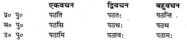 Bihar Board Class 7 Sanskrit व्याकरण धातु-रूपाणि 11