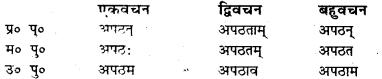 Bihar Board Class 7 Sanskrit व्याकरण धातु-रूपाणि 14