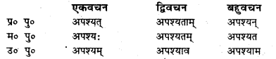 Bihar Board Class 7 Sanskrit व्याकरण धातु-रूपाणि 24