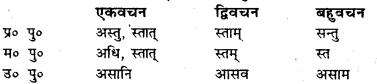 Bihar Board Class 7 Sanskrit व्याकरण धातु-रूपाणि 28