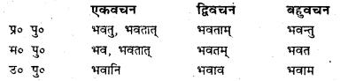 Bihar Board Class 7 Sanskrit व्याकरण धातु-रूपाणि 7