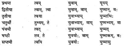Bihar Board Class 7 Sanskrit व्याकरण शब्दरूपाणि 13