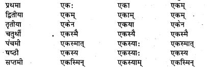 Bihar Board Class 7 Sanskrit व्याकरण शब्दरूपाणि 19