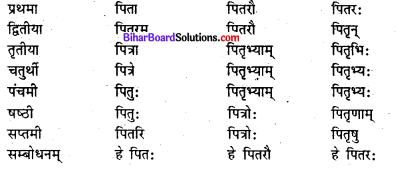 Bihar Board Class 7 Sanskrit व्याकरण शब्दरूपाणि 5