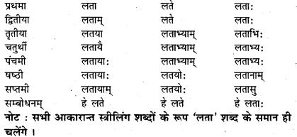 Bihar Board Class 7 Sanskrit व्याकरण शब्दरूपाणि 6