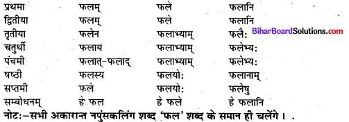 Bihar Board Class 7 Sanskrit व्याकरण शब्दरूपाणि 8