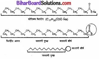 BIhar Board Class 12 Chemistry Chapter 5 पृष्ठ रसायन 11