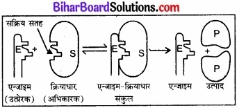 BIhar Board Class 12 Chemistry Chapter 5 पृष्ठ रसायन 9