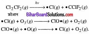BIhar Board Class 12 Chemistry Chapter 7 p-ब्लॉक के तत्त्व img 24