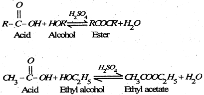 Bihar Board 12th Chemistry Important Questions Long Answer Type Part 5, 8