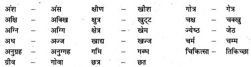 Bihar Board 12th Pali Grammar Important Questions 7