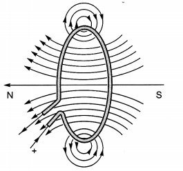 Bihar Board Class 10 Science Solutions Chapter 13 Magnetic Effects of Electric Current 2