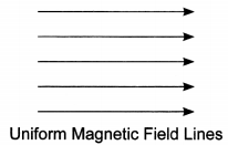 Bihar Board Class 10 Science Solutions Chapter 13 Magnetic Effects of Electric Current 3