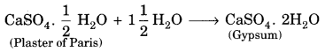 Bihar Board Class 10 Science Solutions Chapter 2 Acids, Bases and Salts 4