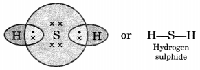 Bihar Board Class 10 Science Solutions Chapter 4 Carbon and Its Compounds 17