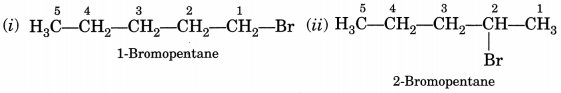 Bihar Board Class 10 Science Solutions Chapter 4 Carbon and Its Compounds 7