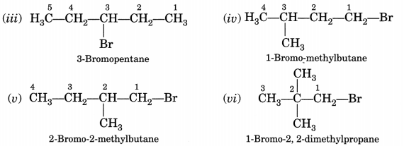 Bihar Board Class 10 Science Solutions Chapter 4 Carbon and Its Compounds 8